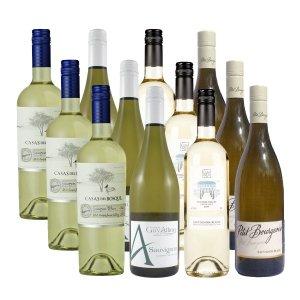 World of Sauvignon Blanc 12 pack