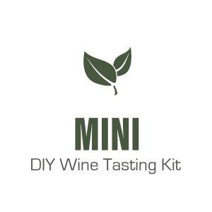Mini DIY Wine Tasting Kit