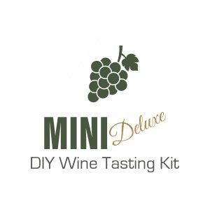 Mini Deluxe DIY Wine Tasting Kit copy