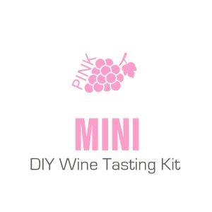 Mini Pink DIY Wine Tasting Kit