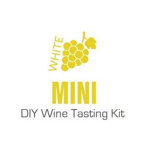 Mini White DIY Wine Tasting Kit