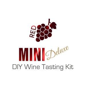 Mini Red Deluxe DIY Wine Tasting Kit