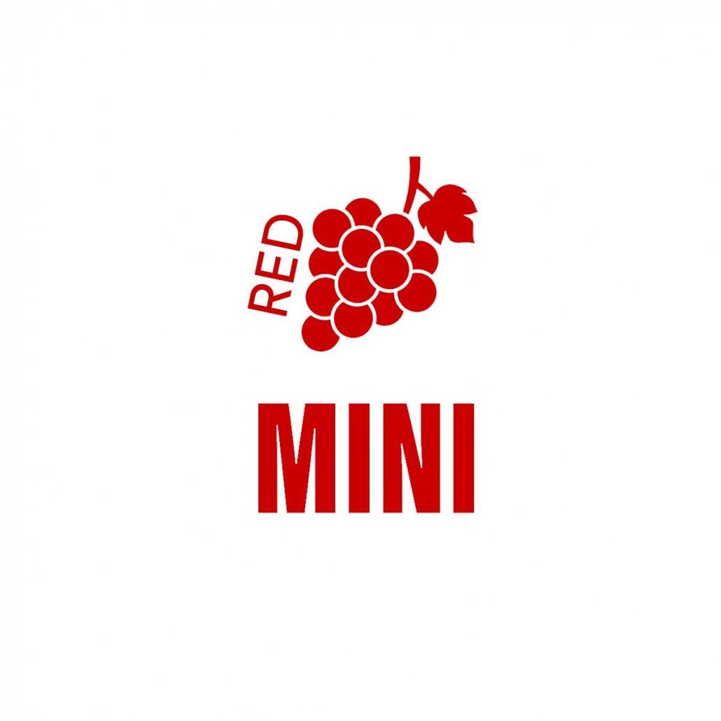 Mini Red DIY Wine Tasting Kit